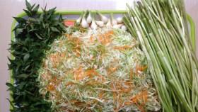 Dân dã bắp cải muối chua